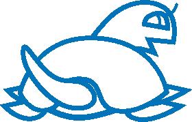 Logo do PostgreSQL com a tartaruga como símbolo